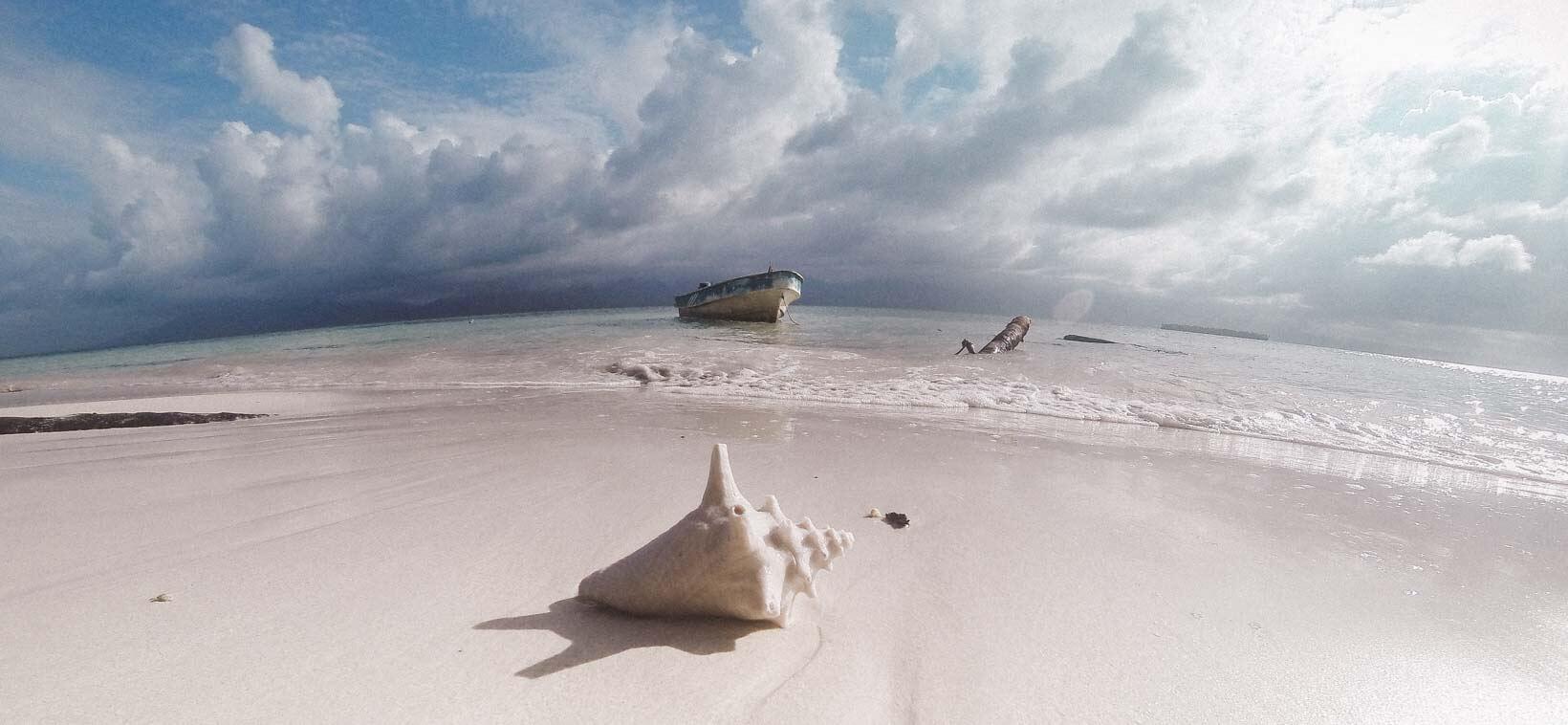 San Blas Islands Pelican island