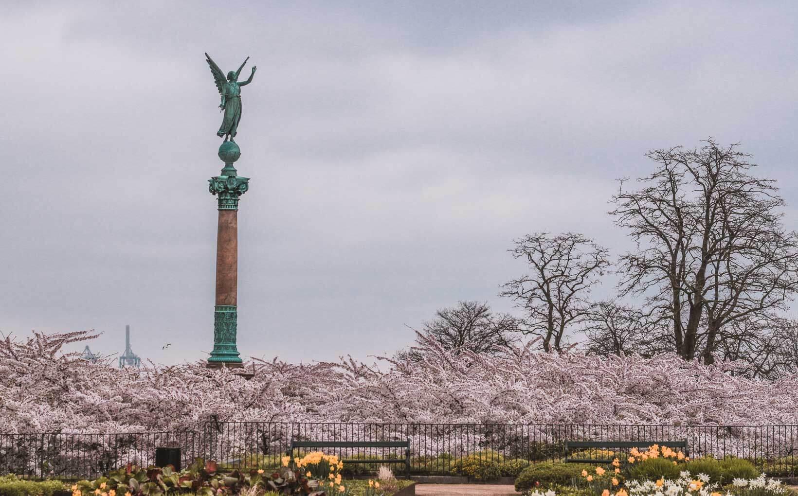 Langelinie Park Harbor Where to find cherry blossoms in Copenhagen_