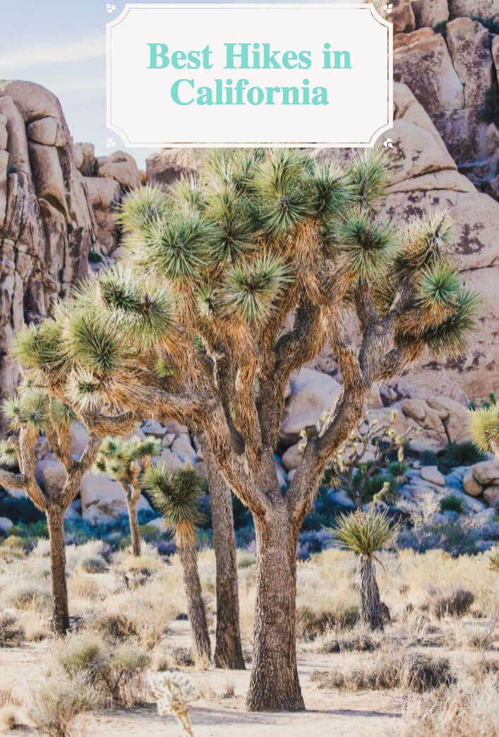 Best Hikes in California for Adventure Seekers #California #USA #AdventureTravel