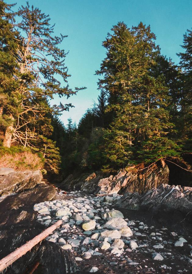Vancouver-Island-Botanical-Beach-Provincial-Park-2