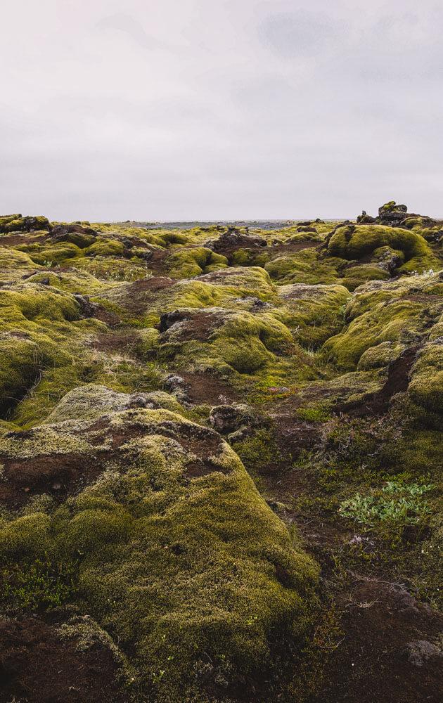 Eldhraun-lava-fields-Iceland-3