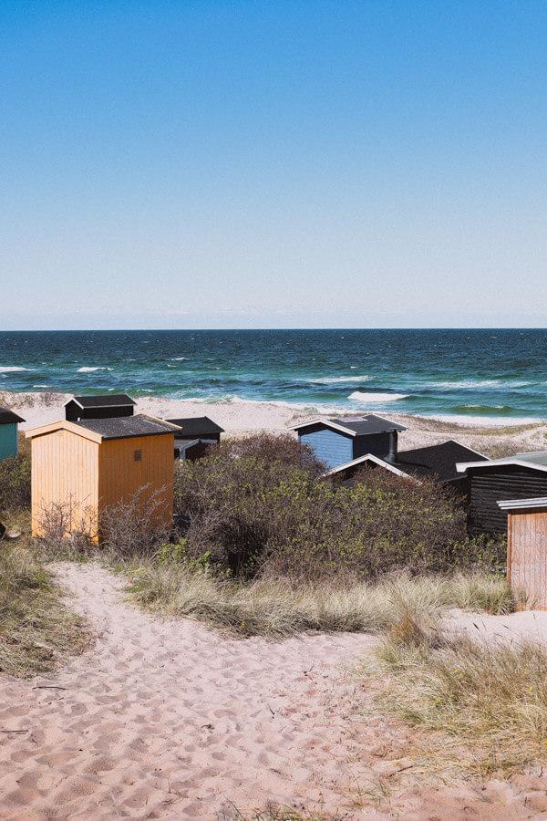 Beautiful Nature in Denmark - Tisvilde Beach